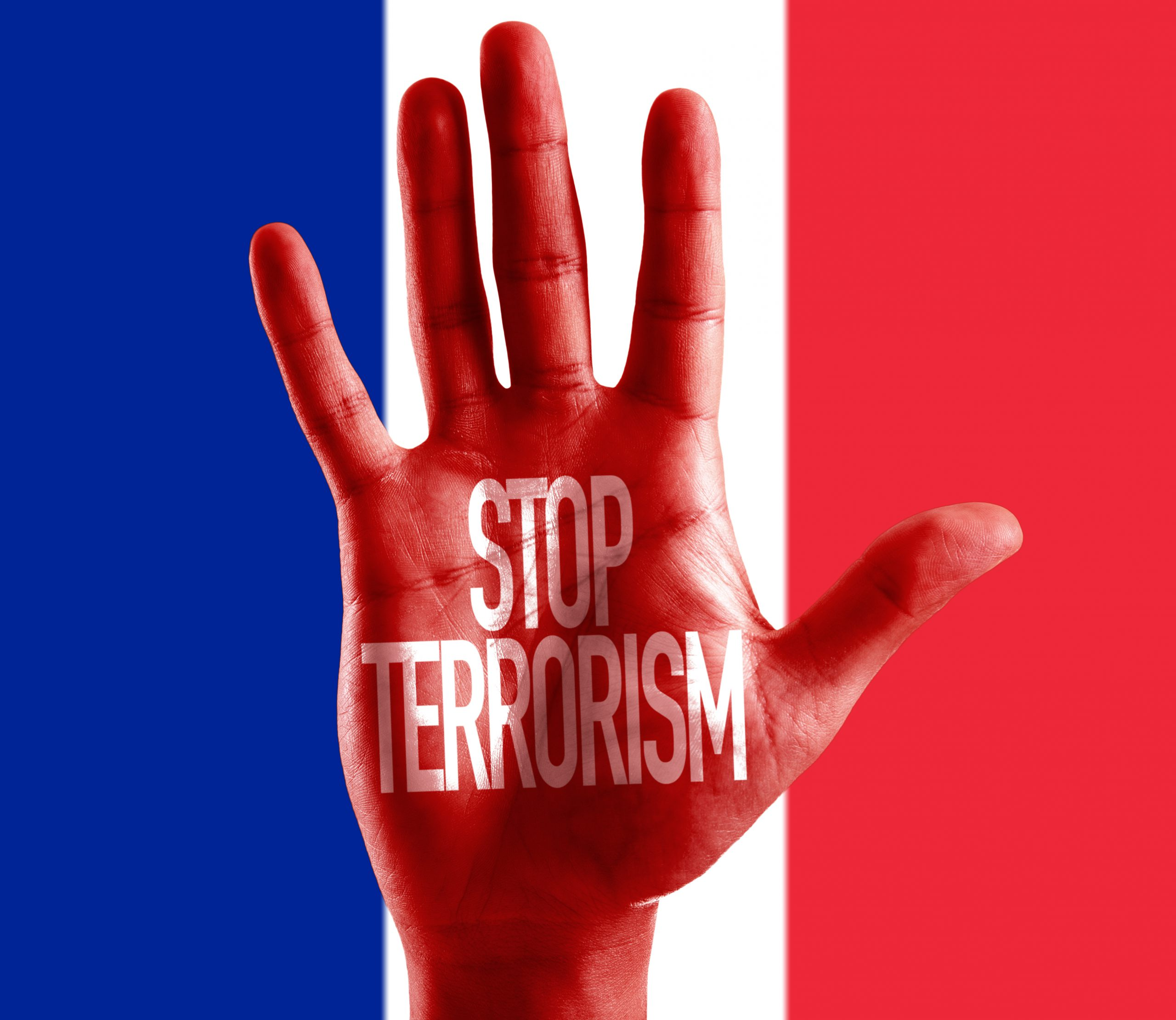 BS_Stop Terrorism painted on hand_French Flag_Gustavo Frazao_108506684